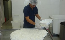 cora cheese production