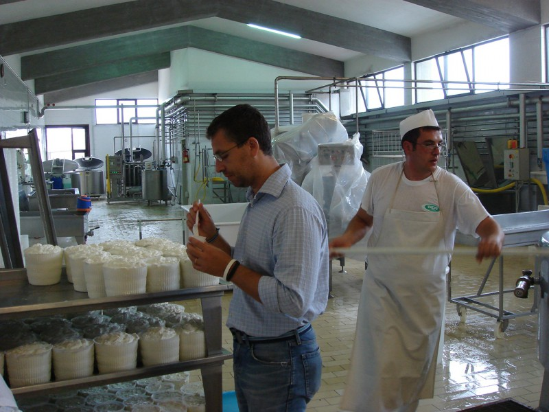 Ricotta tasting at factory in Sicilia